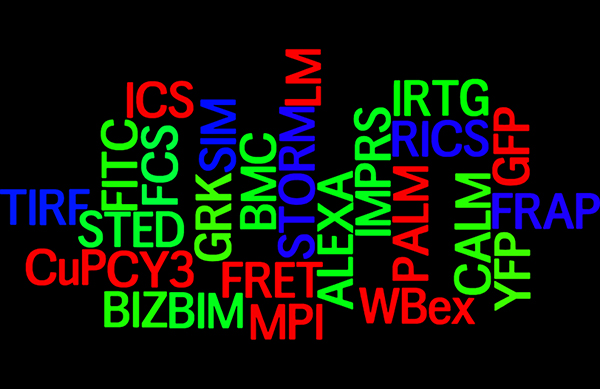 Acronym wordle new klein